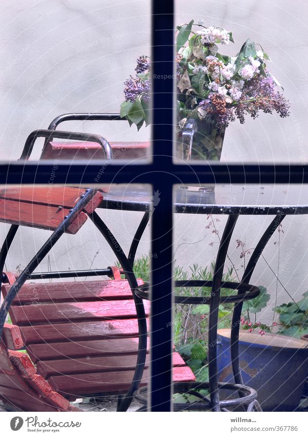 Prague spring in the backyard Spring Lilac lilac bouquet Bouquet Loneliness Transience Backyard Garden Garden table Garden chair Window transom and mullion Limp