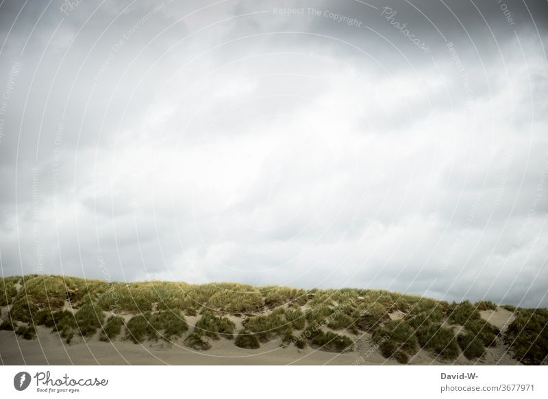 Dunes and sky dunes Sky North Sea Baltic Sea dune landscape Vacation destination tranquillity Relaxation vacation