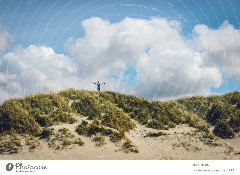 Freedom in the dunes tranquillity dune landscape North Sea Vacation & Travel Relaxation Man Joie de vivre (Vitality) Baltic Sea
