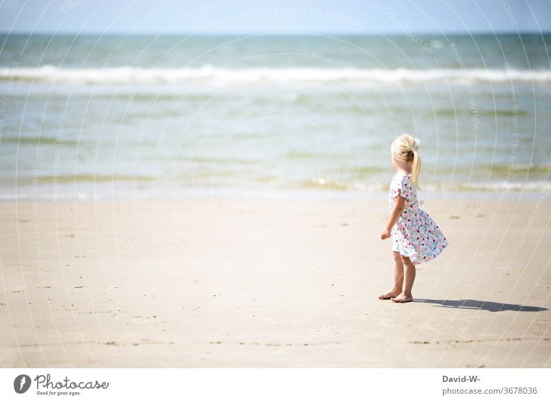 Girl stands in her summer dress on the beach and admires the many waters girl Ocean Beach Stand Sand by oneself Anonymous Rear view Cute already spellbound huge