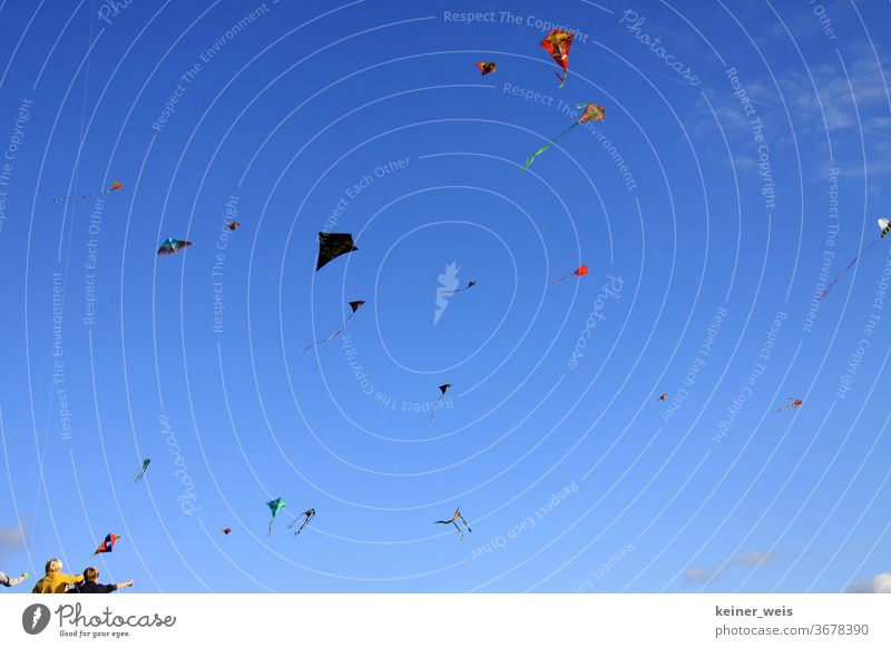 Many flying kites in a blue sky and two children small at the bottom of the picture hang gliders Wind chime wind chimes free time Flying Sky Air dragon string