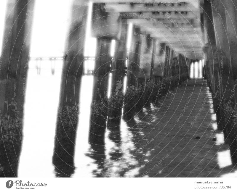 cage Cage Ocean Jetty Captured Infinity Black White Bridge Black & white photo Water Penitentiary Rod Corridor