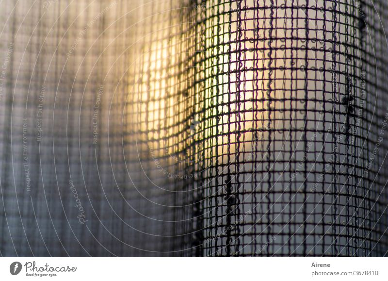 translucent Curtain Cloth Net Sunlight Drape Window Decoration Abstract Network Hope Transparent Evening Twilight Sunset Sunrise hole pattern slack opaque hung