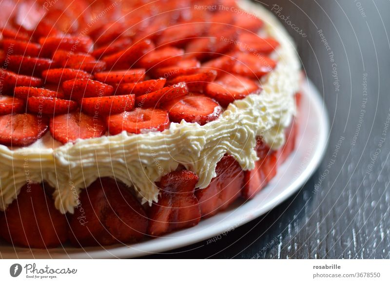 Anticipation | for the strawberry tart Strawberry pie Gateau Cake Delicious fruit Cream homemade Self-made Strawberry Slices Near detail Detail appetizing