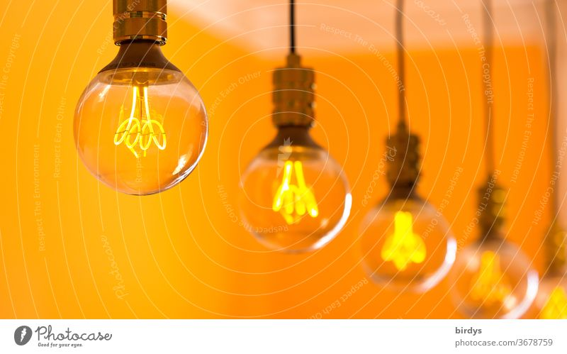 Orange-coloured LED lights in a row in incandescent optics, shallow depth of field Electric bulb Light Lamp Many Row Energy-saving bulb orange light filament