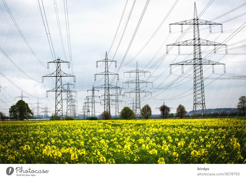 Power line over a rape field. Renewable, green energy. High voltage lines, overhead lines stream power line Energy industry High voltage power line Power poles