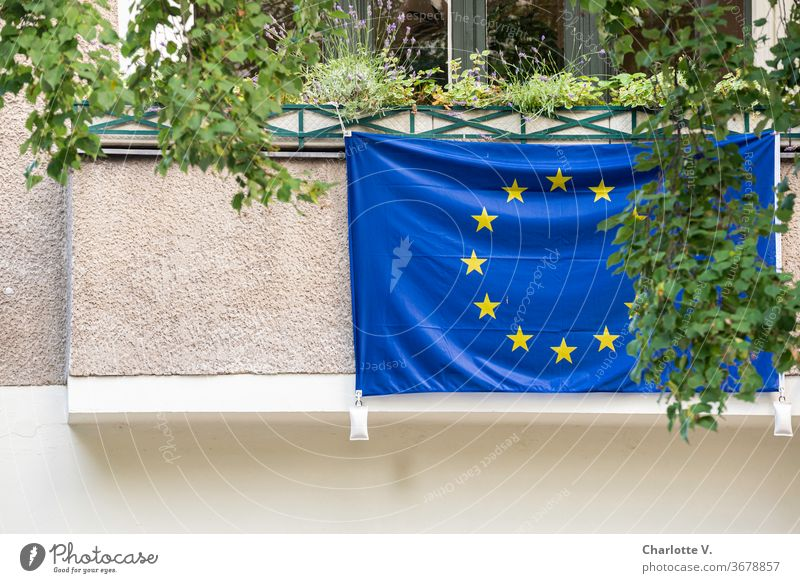 Viva Europa   European flag on a balcony Balcony Balcony plants Flag Deserted Blue Yellow Symbols and metaphors Cloth Exterior shot Star (Symbol)