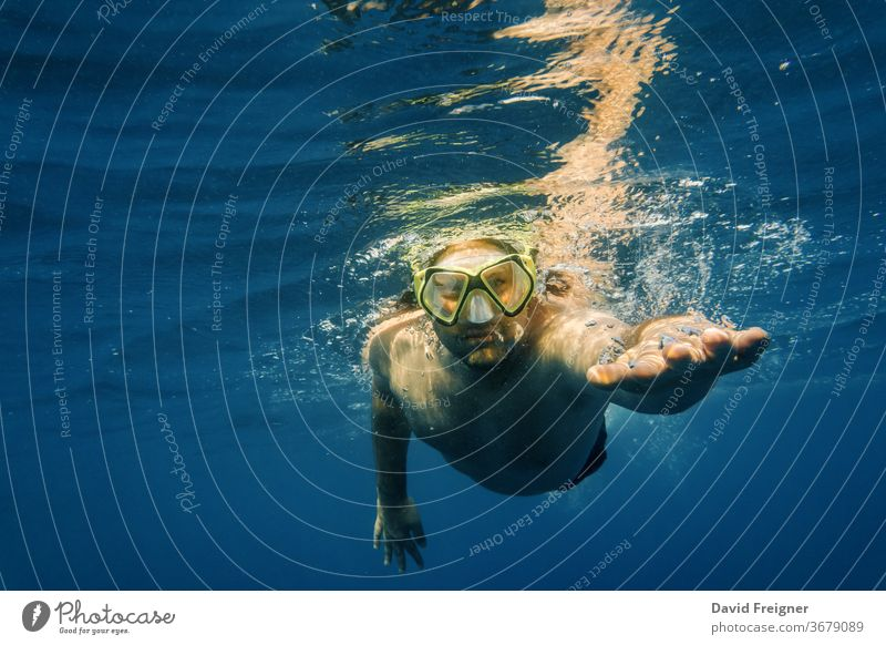 Male diver in blue water. Open sea, ocean, swimming, active travel and underwater diving concept. free mask man sport young people male crawl freestyle nature