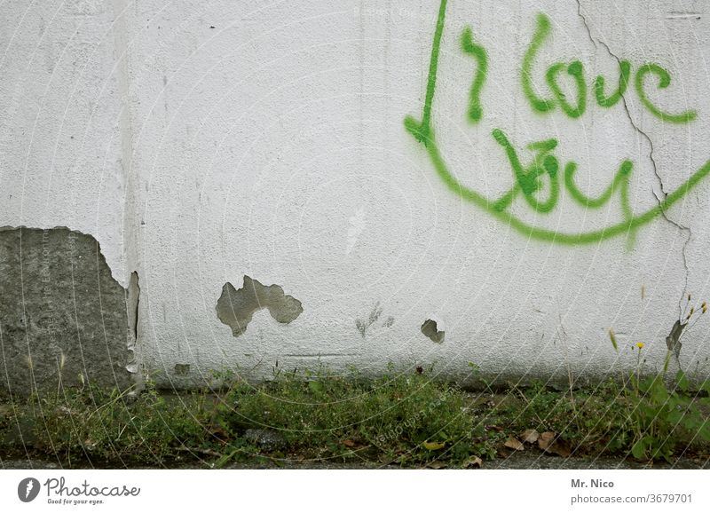 Expression of love Love Display of affection Graffiti Wall (building) Characters Declaration of love Wall (barrier) With love Plaster Grass Weed Plant Emotions