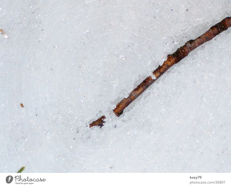 Winter Snow Glittering Wet Dry Stick