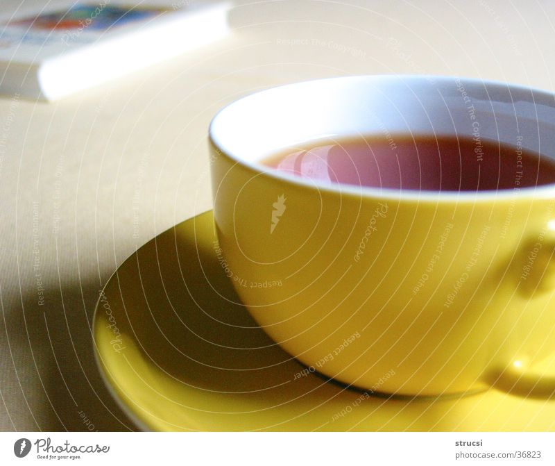 cup Beverage Hot drink Tea Cup Relaxation Calm Yellow Cozy Warm-heartedness To enjoy Colour photo Close-up Deserted Shallow depth of field Book Round Shadow