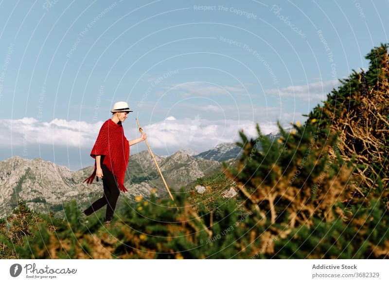 Woman in mountains in summer tranquil traveler enjoy woman sun highland vacation serene female holiday hill tourism trip journey amazing landscape valley nature