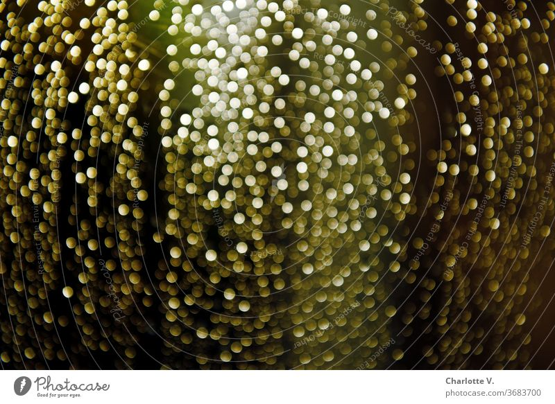 raindrops | knocking on my window blurred sparkle Rain Drops of water Wet Water Detail green Gold golden Colour photo Weather Window pane Bad weather Blur