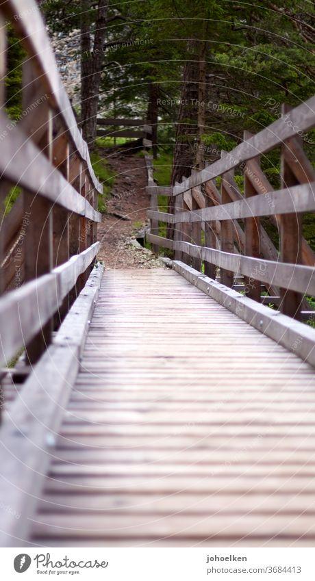 wrong track bridge Wooden bridge Handrail Woodway Forest Hiking bridging Lanes & trails wood Worm's-eye view hiking trail Coniferous forest bridge building