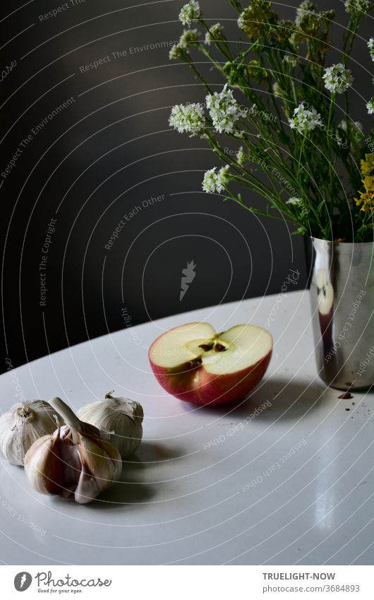 White round table in front of a dark background with a still life of garlic, half an apple and a shiny metal vase with a bunch of meadow flowers with small white blossoms and green leaves.