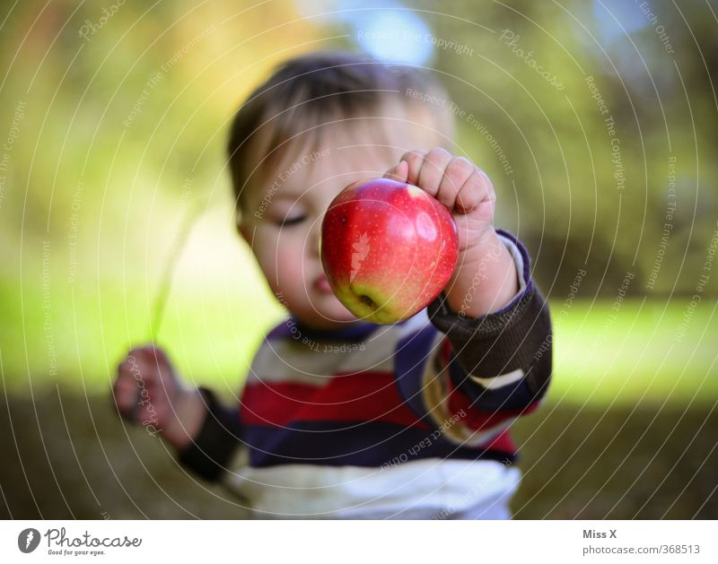 Human being Child Autumn Playing Healthy Eating Food Fruit Infancy Baby Fresh Nutrition Cute Sweet Apple