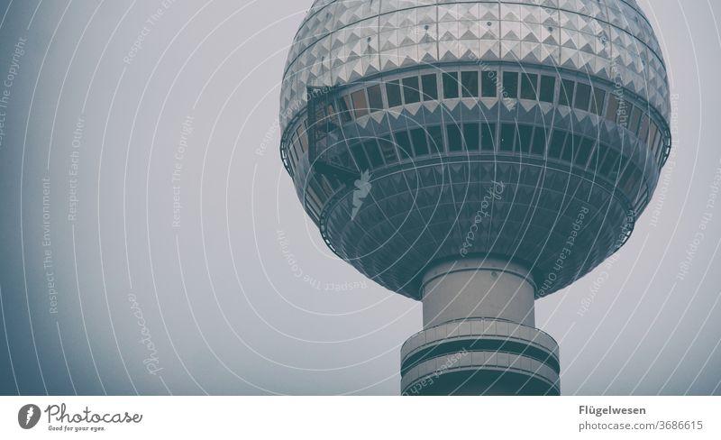 bearlin Berlin Berlin TV Tower Downtown Berlin The Wall outlook Lookout tower