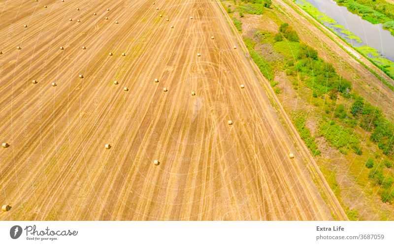 Aerial view of lined, round bales of straw on the agricultural field Above Across Agricultural Agriculture Bale Cereal Countryside Crop Drone Dry Farm Farming