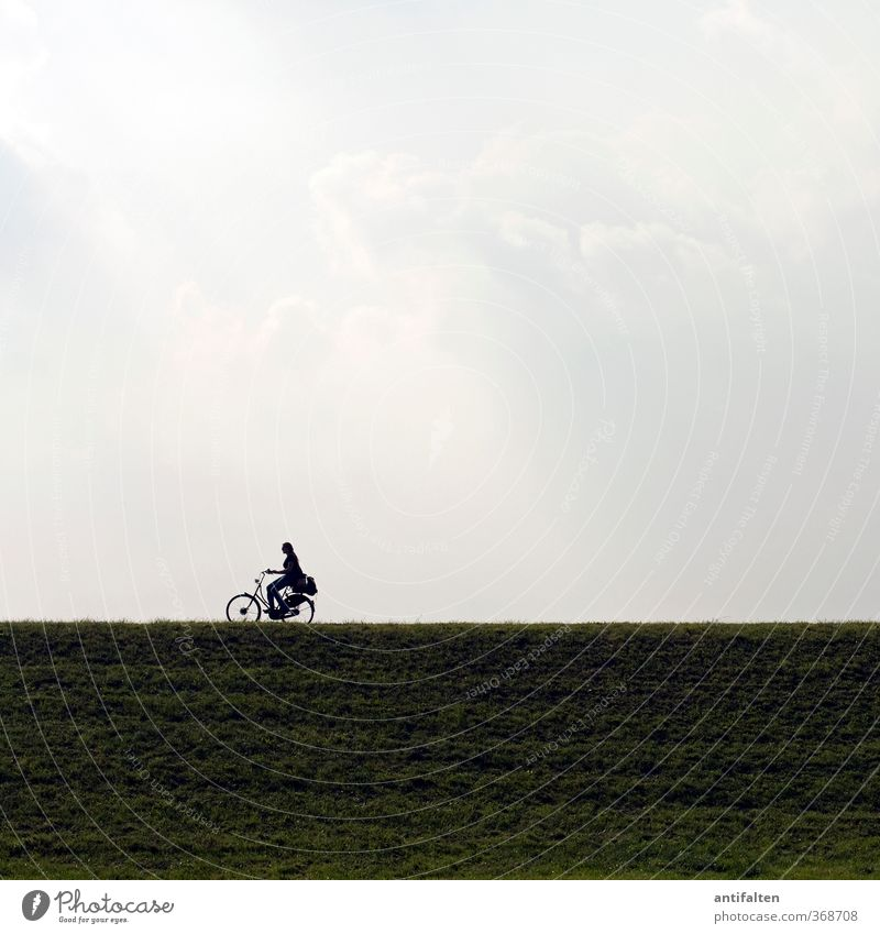 she drives Cycling Bicycle Feminine Woman Adults Body 1 Human being 18 - 30 years Youth (Young adults) Landscape Sky Clouds Sunlight Spring Summer Rhein meadows
