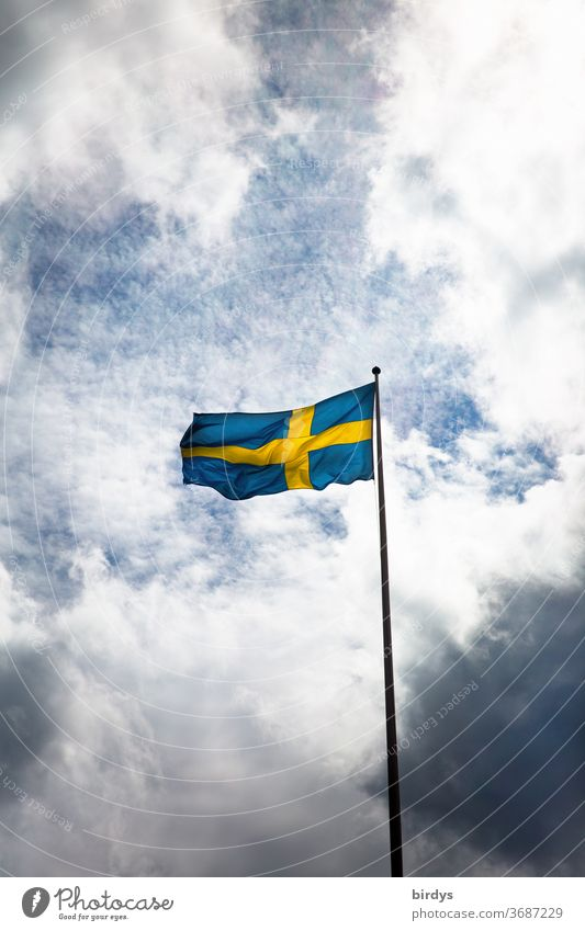 the Swedish flag is waving in the wind in front of the sky and clouds Swede Ensign corona Patriotism Flag Sky Blow Flagpole somber Blue Yellow Scandinavia Wind