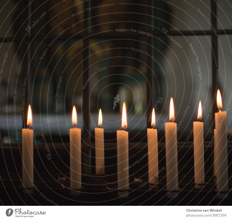 Candle altar in a chapel burning candles Chapel Church pray tranquillity Hope Light religion Belief Religion and faith Christianity Prayer Holy weaker Death
