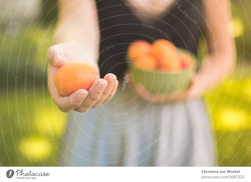 favourite person | young woman offers an apricot and holds a bowl of fruit in the other hand Young woman by hand Apricots Summer Offer stop Vitamin Fresh Juicy