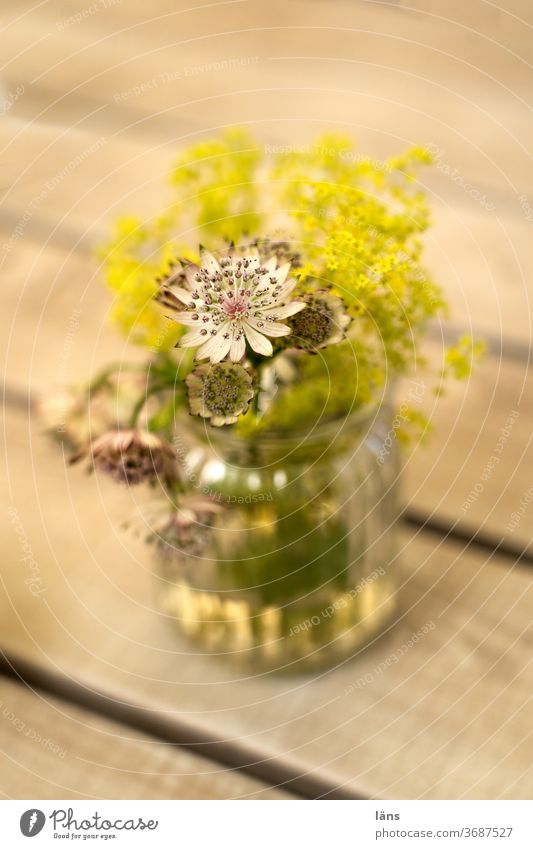 Flowers in vase flowers Vase Bouquet bleed Decoration Deserted Blossoming Colour photo Table Gastronomy
