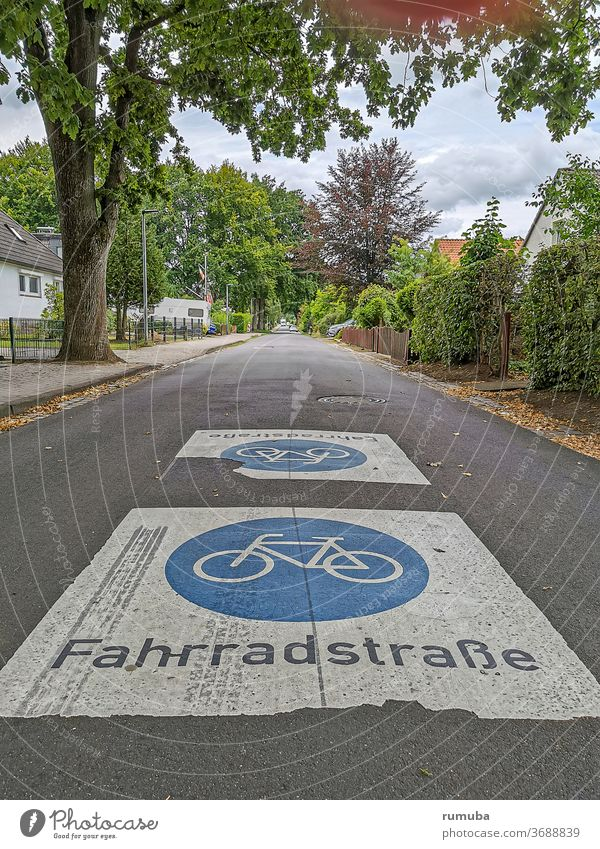 Bicycle road emblem, sign Street Lettering Letters (alphabet) Traffic infrastructure Colour Asphalt Pictogram mark Town Transport bicycle road Cycling Hedge