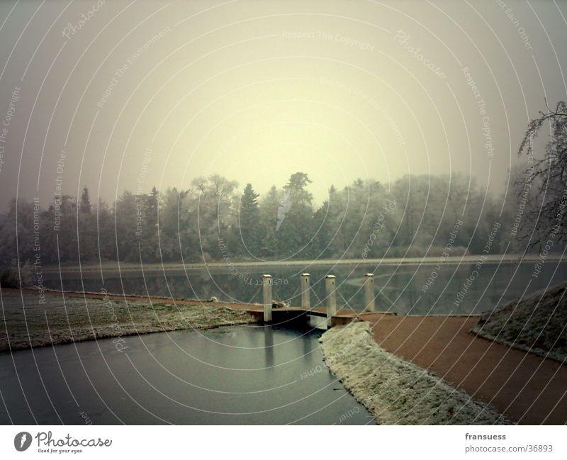 footbridge Lake Footbridge Water Wörtlitzer Park Frost Filter
