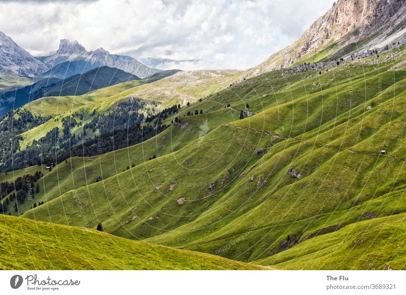 Summer in the Dolomites Alps Alpine pasture Mountain Meadow Clouds Nature Sky Rock Peak Hiking South Tyrol Panorama (View) Vacation & Travel Landscape High Alps