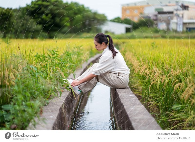 Ethnic woman relaxing near rice fields irrigate canal nature green summer weekend cultivate female ethnic asian stone border rest sit water aqua calm tranquil