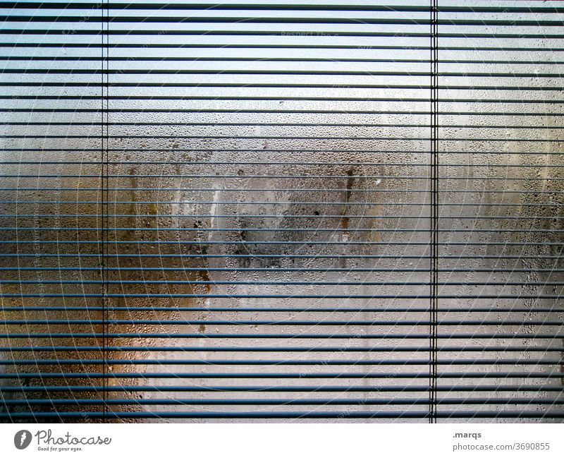 privacy screen Window steamed-up window Dew Damp Line Venetian blinds Hazy opaque Misted up Drops of water Window pane