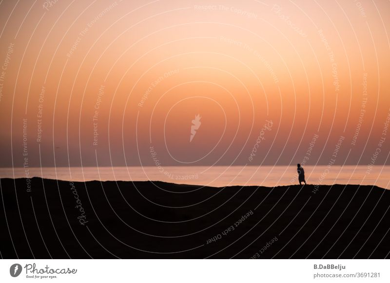 At dawn, a silhouette is on the beach, why only, what drives it... behind it, the view of the Gulf of Oman opens up. travel Beach Dawn Search Ocean Water