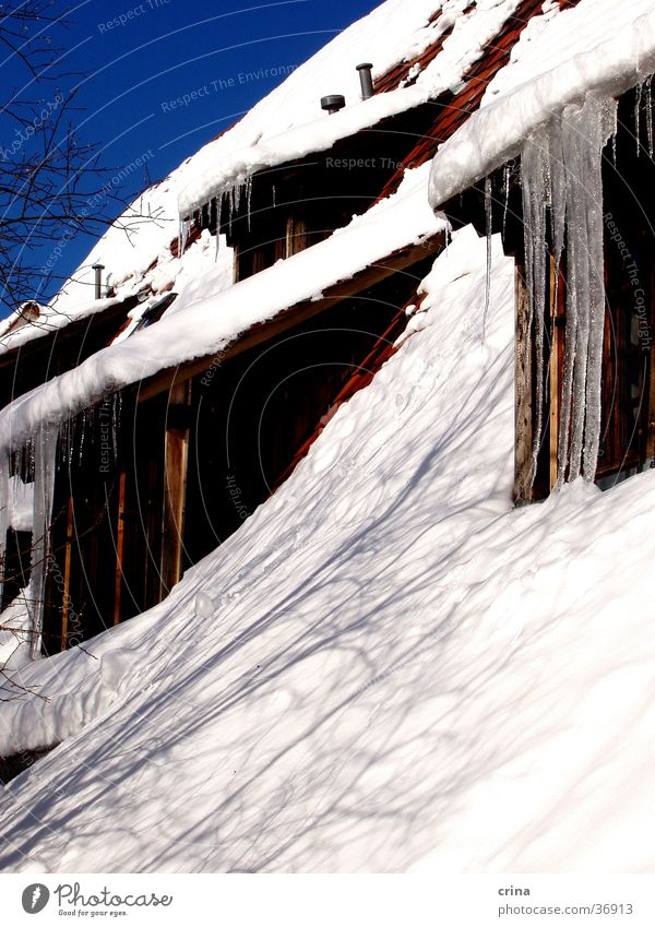House in winter House (Residential Structure) Roof Icicle White Living or residing Snow Ice