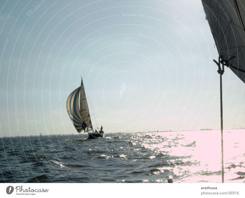 Watercraft Navigation Sail Yacht Regatta Sport boats Ijsselmeer