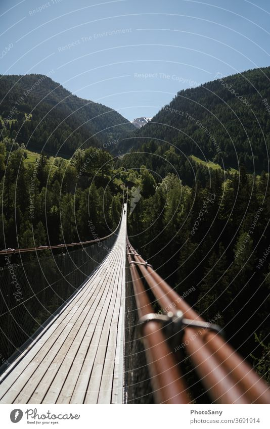 suspension bridge mountains Forest Suspension bridge Nature Alps Tourist Attraction Switzerland valais Green Brown Sky Blue sky