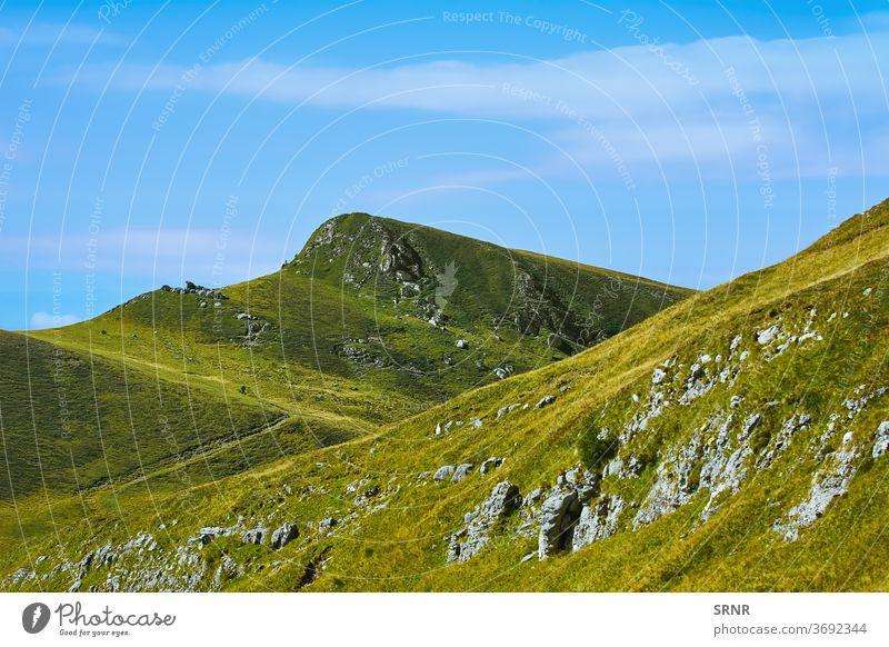 Cota 2000 in Bucegi Mountains, Sinaia, Romania Sibiu Nature ecosystem Environment environmental bucegi mountains Carpathian Mountains carpathians
