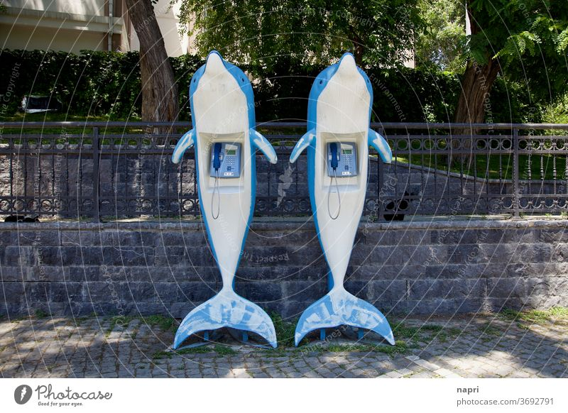 Dolphin-Hotline | Two plastic dolphins with a public phone in their stomach Telephone Phone box Communicate Receiver Connection Retro Analog Contact Fish