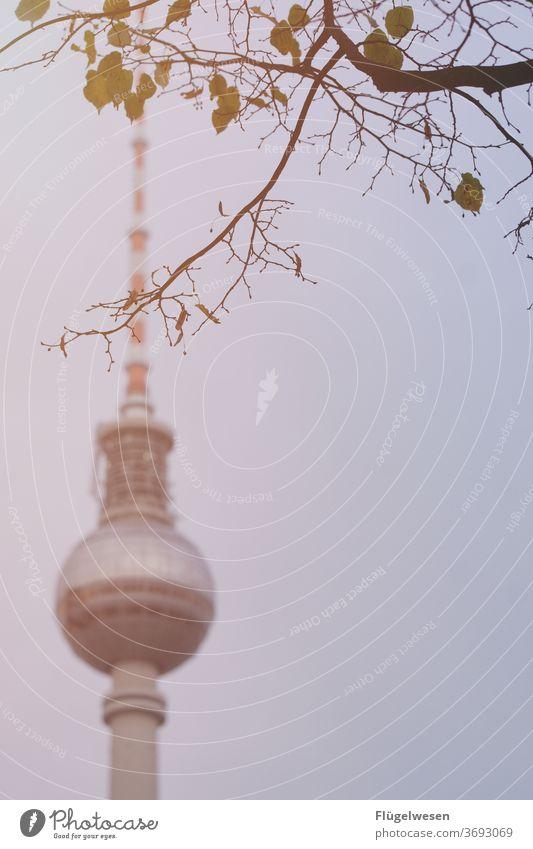 Bearlin II Berlin Berlin TV Tower Downtown Berlin The Wall outlook Lookout tower Blur