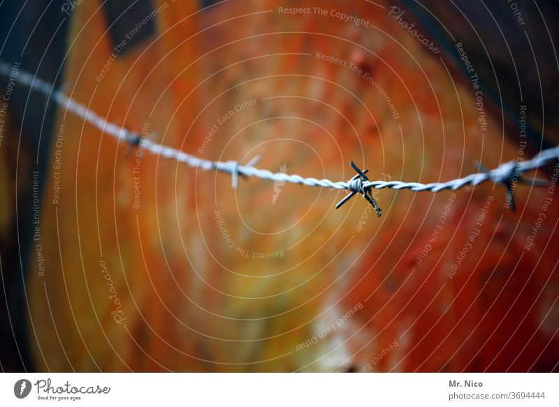 Barbed wire before still life Fence Border Barrier Protection Art Work of art Safety Wire Dangerous Boundary Point Freedom Metalware Thorny Deserted Fear Threat