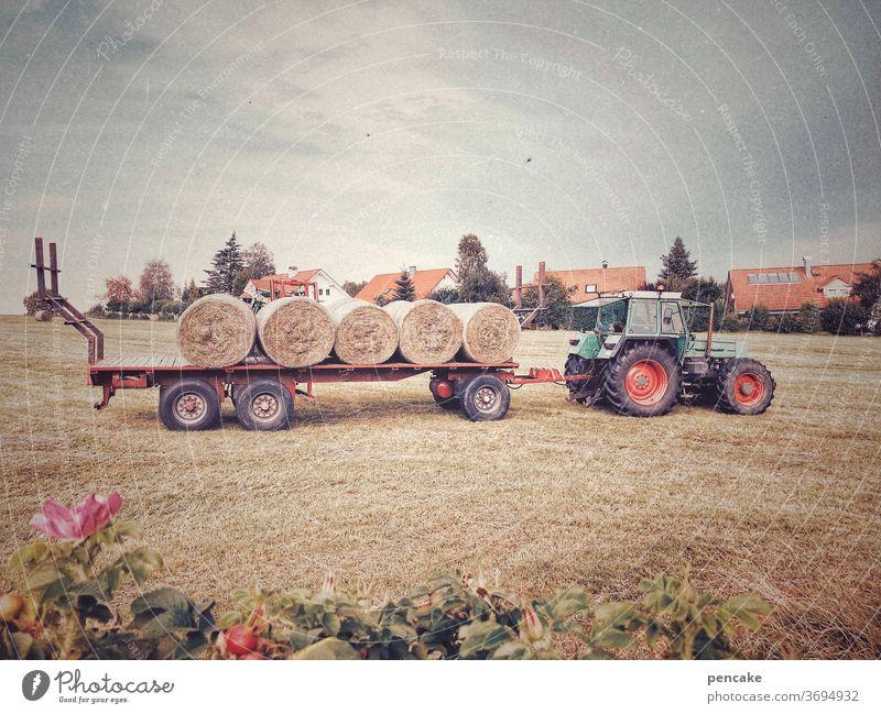 heuwagen Heu Ernte Traktor Gabelstapler Landwirtschaft Heuballen Gewitterstimmung Bauernhof
