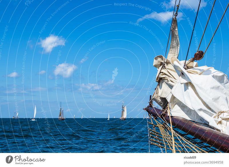 Sailing ships on the Hanse Sail in Rostock Windjammer Warnemünde Baltic Sea Ocean Coast Maritime seafaring Navigation Baltic coast Sky Clouds Blue Water