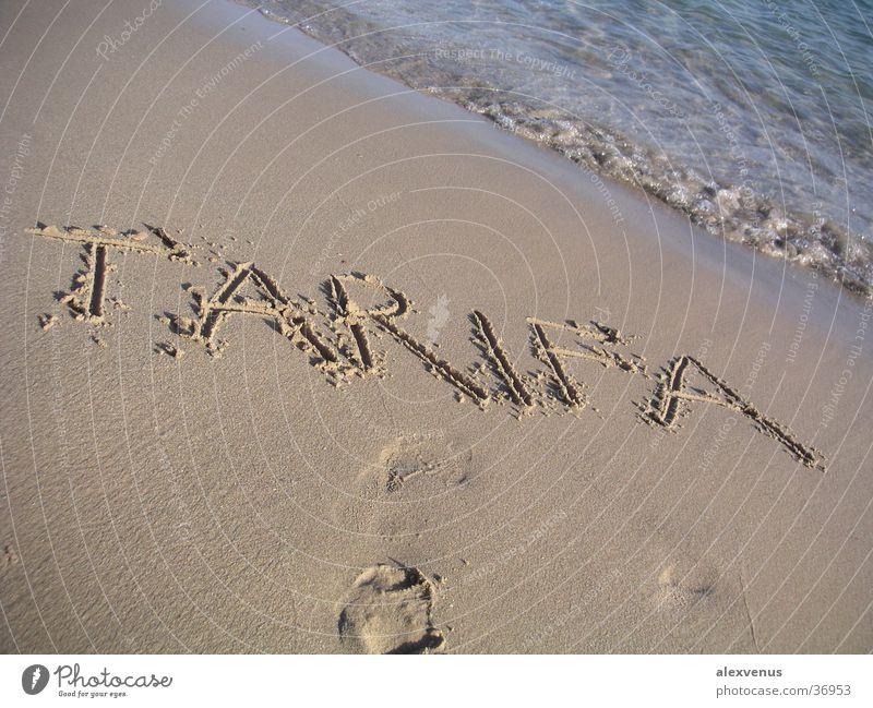 tarifa Europe Tarifa Beach Ocean Characters Sand South