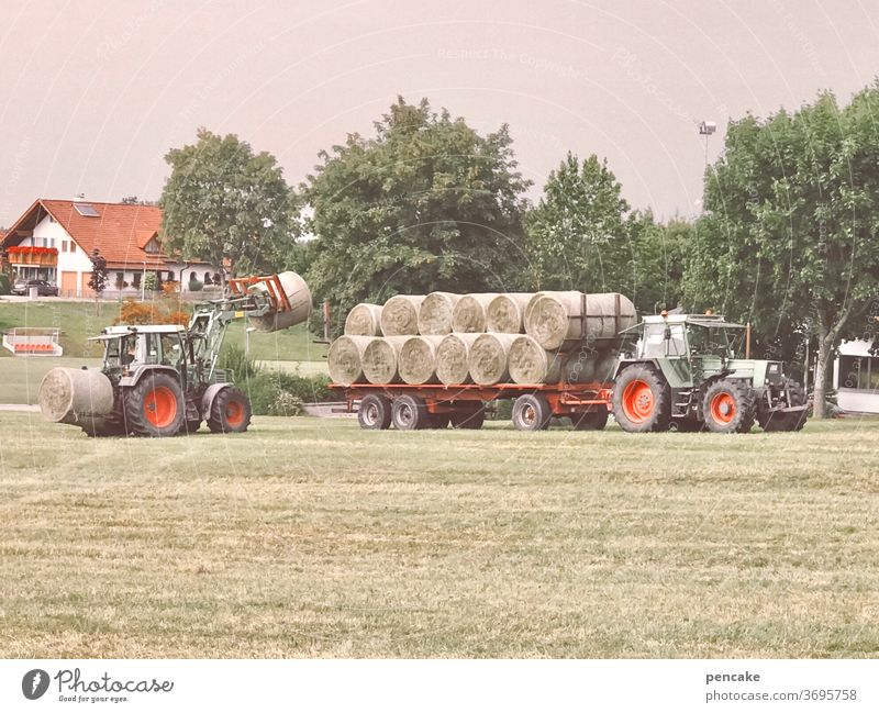 systemrelevant | gesunde landwirtschaft Landwirtschaft ländlich Gras Heu Heuballen Ernte nachhaltig Traktor