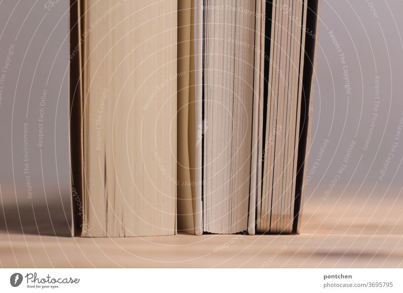 Three books of different thicknesses with white pages stand close together on a wooden table. Supporting each other, holding together Reading Education