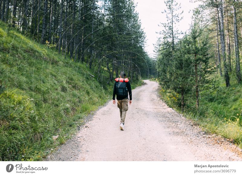 Young male nature explorer walking on the dirt road through the forest active adventure backpack backpacker backpacking countryside gravel green healthy hike