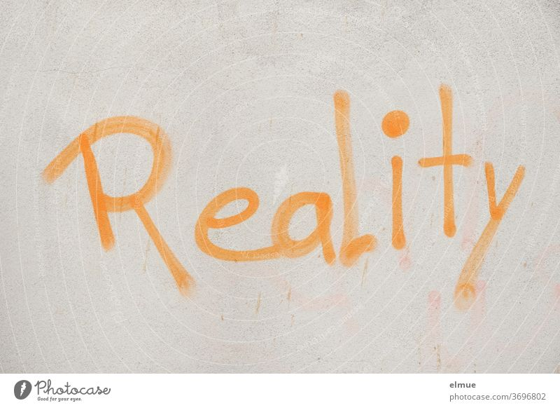"""Reality"" is written in orange on the gray wall reality Opinion Wall (building) Graffiti Lifestyle English Orange Gray Facade Characters Communication Clue Daub"