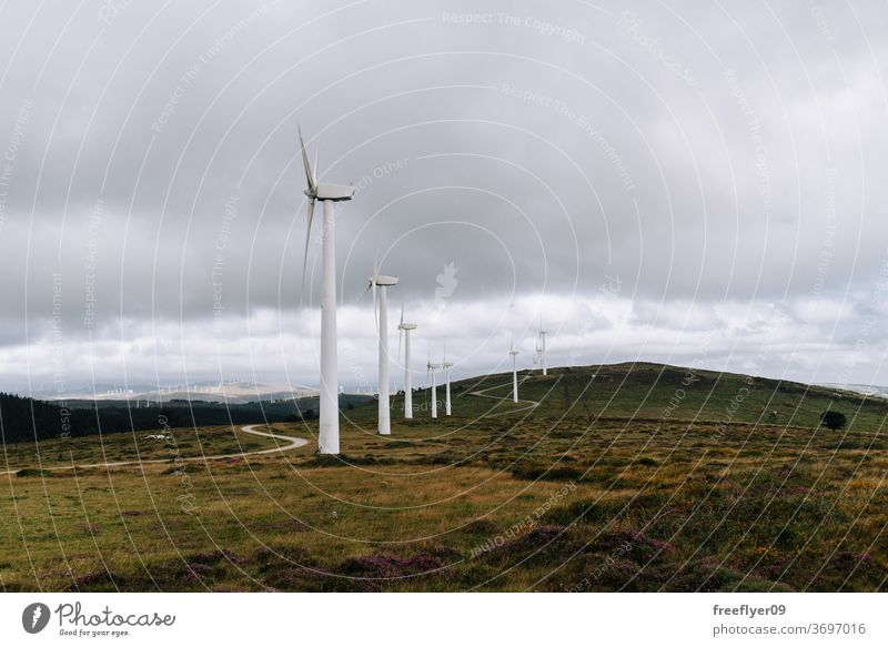 Wind turbines on an open field wind turbine eco energy electricity ecology copy space sky galicia spain clean farm alternative generator generation green nature