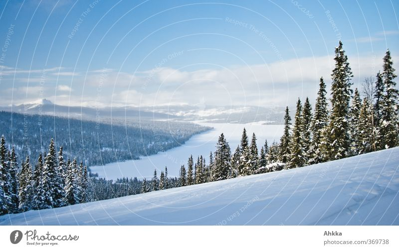 Sky Nature Relaxation Loneliness Landscape Calm Winter Forest Cold Snow Freedom Lake Horizon Moody Ice Idyll