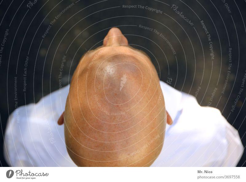 Bald Masculine Head Skin Man Bald or shaved head Bleak Shaven Headache Death's head hairstyle scalp ears shorn Hair and hairstyles Nose Upper body
